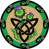 9723089-thistle-flowers-with-celtic-symbols
